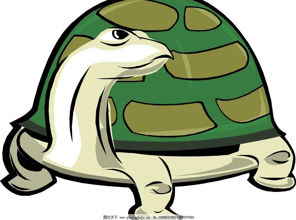 乌龟 水底生物 动物 爬行动物 两栖动物 生物世界 野生动物 矢量图库