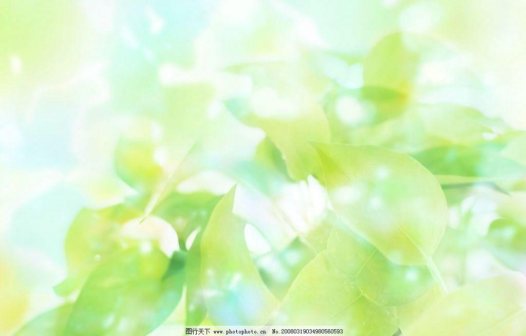 清新世界 春天 春 夏天 春季 夏季 绿色 蓝色 明快 叶子 清爽 自然