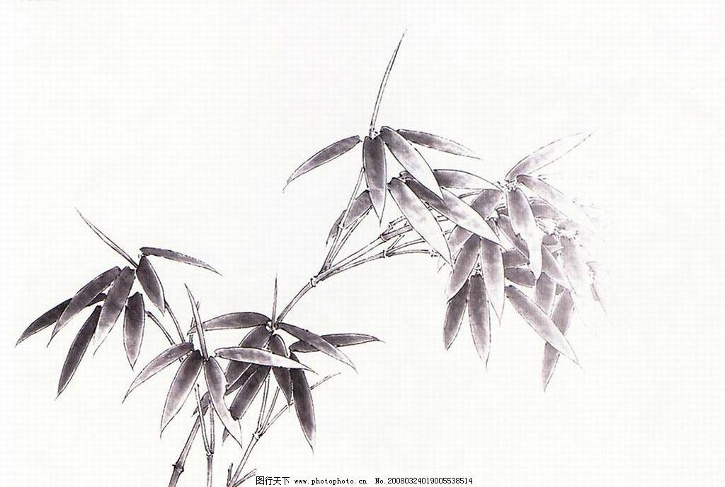 竹子的画图片