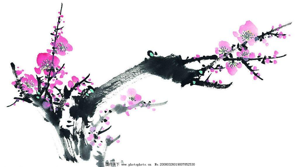 老枝桃花图片