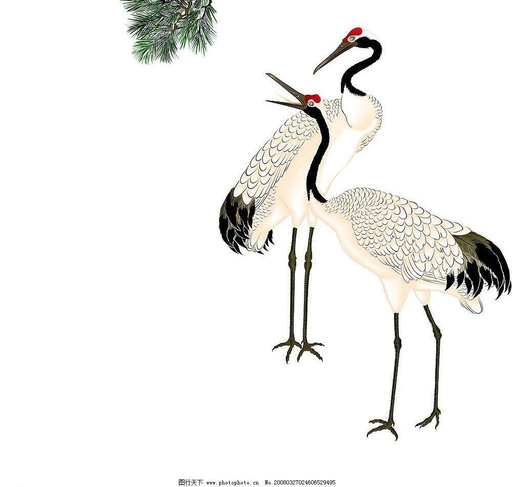 仙鹤 生物世界 鸟类 矢量图库