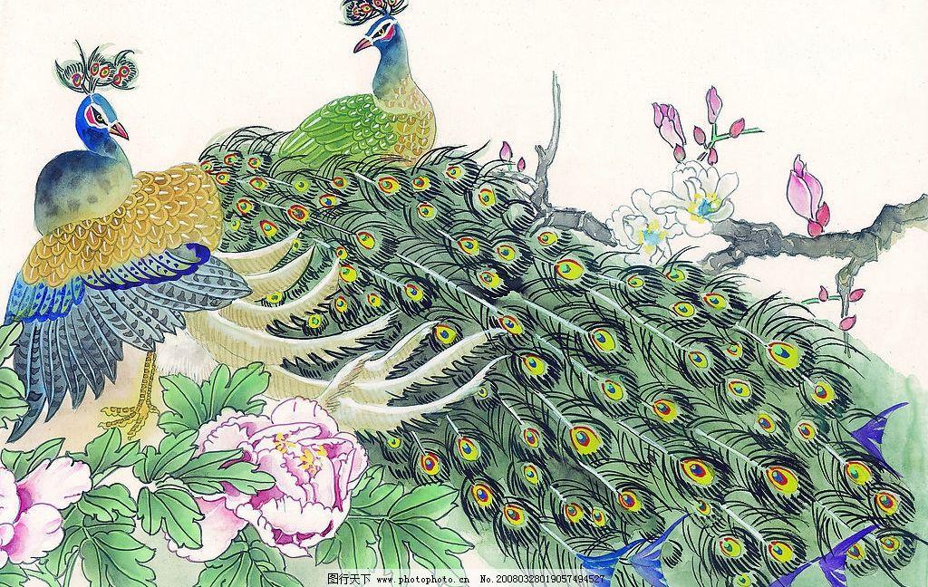 国画孔雀 国画 孔雀 艺术 古典 水彩 文化艺术 绘画书法 设计图库 72