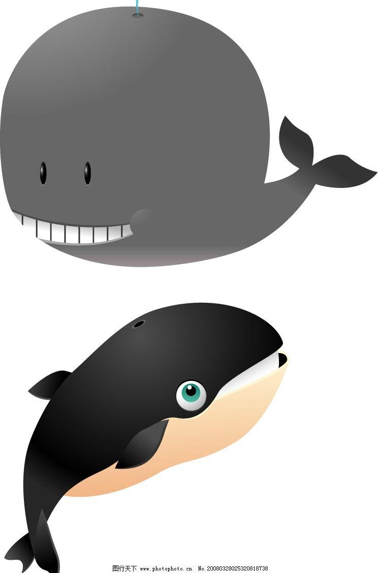 鲸鱼 海洋生物 动物 矢量 生物世界 矢量图库   ai